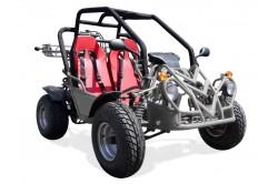 Buggy homologué 250cc Gris