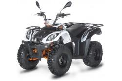 Quad 200cc homologué Kayo